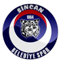 Sincanspor.png
